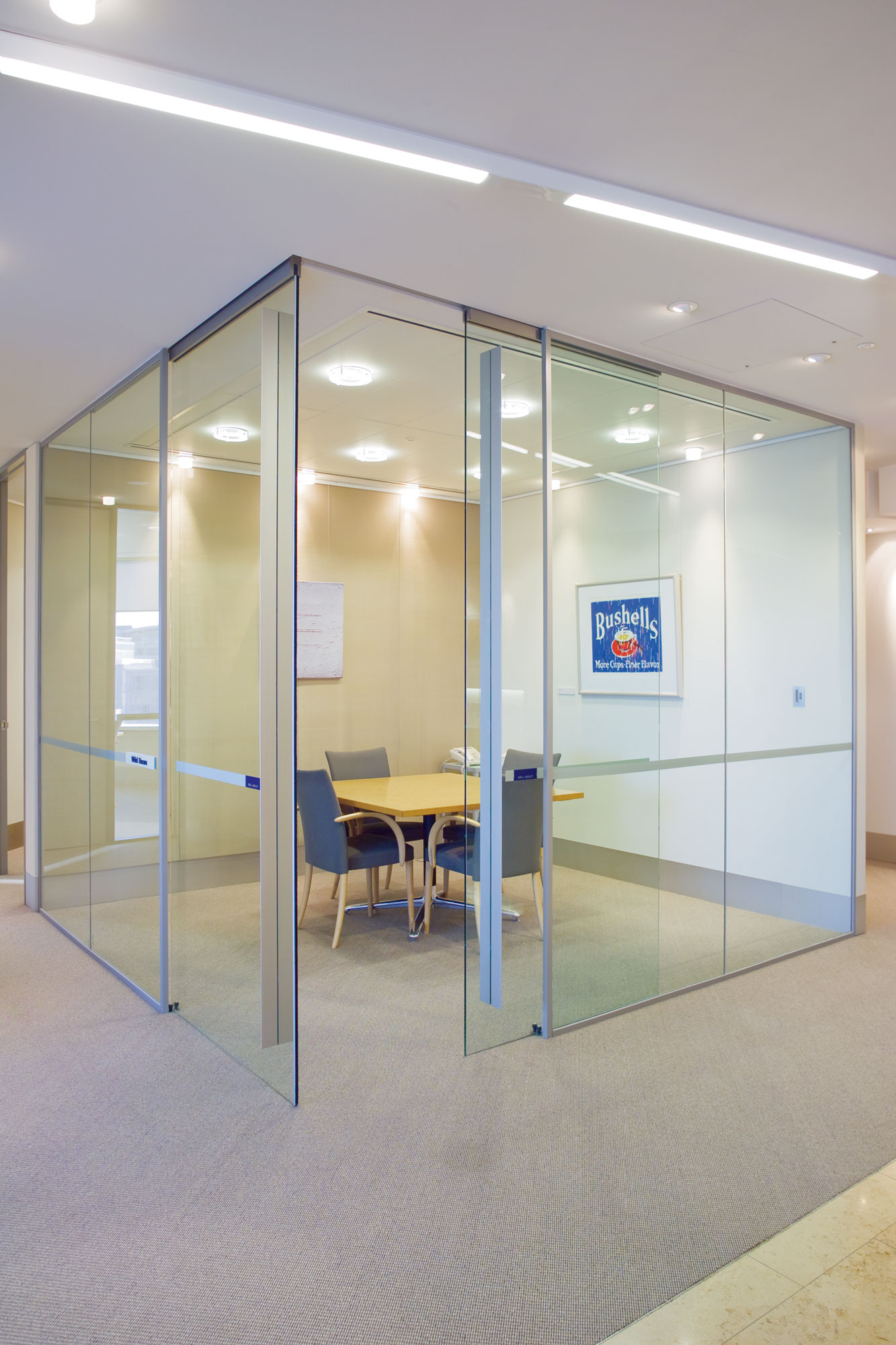 Partition TopMount Track with Frameless Glass doors